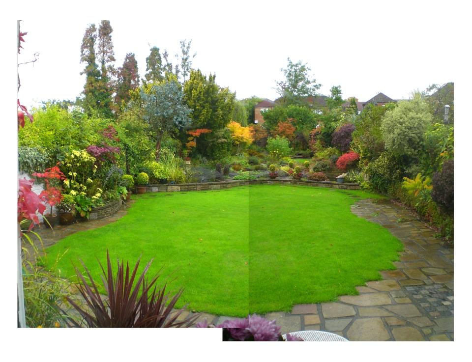 autumn garden 2013